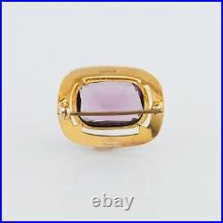 10k Yellow Gold Antique Ornate Grape Garnet Pin/Brooch