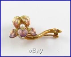 14k Gold Art Nouveau Whiteside & Blank Enamel & Pearl Iris Flower Brooch Pin