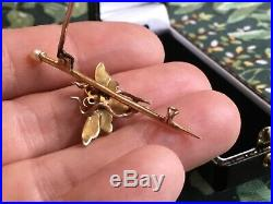 ANTIQUE 15ct18ct GOLD CORAL PEARL MOTH RUBY EYES BROOCH / PIN BUG INSECT 2.8g