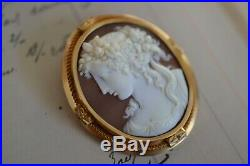 Antique French 18k Gold Frame Carved Shell Cameo Brooch Pin