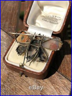 Antique Georgian Yellow Gold Moss Agate Large Butterfly Moth Bug Brooch Pin