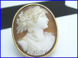 Antique Victorian Art Nouveau era 14K Gold Carved Shell Cameo Brooch Pin