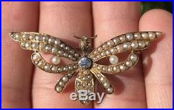 Antique Victorian Bee Bug Insect 14k Yellow Gold Diamond & Seed Pearl Pin Brooch