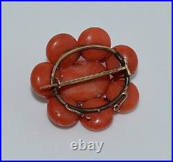 Large Antique Victorian Salmon Coral Cabochon Pin Brooch 14 Kt Gold