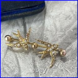 Victorian 15ct Gold Seed Pearl Bird Brooch, Antique 2 Swallows Pin & Antique Box